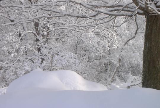 Tug Hill snow