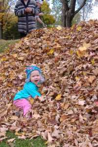 Ellie and the leaf pile